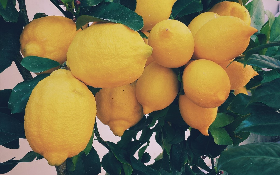 What to do with Your Lemons?